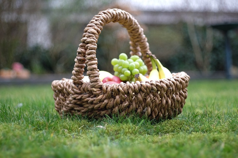 Podstawowe produkty na piknik